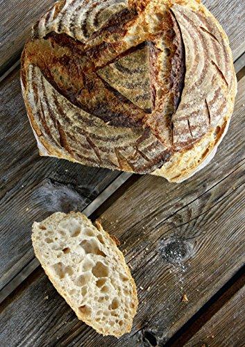 Auch Einsteiger, kommen schnell zu guten Ergebnissen mit Brot backen in Perfektion mit Sauerteig
